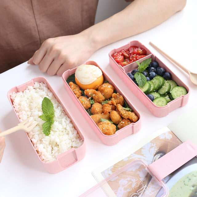 Portable 3 Layered Lunch Box